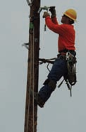 Photo: NLI lineman Dan Wanous works high up on a pole.